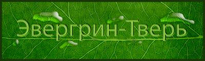 ООО Эвергрин-Тверь