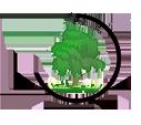 ООО Сибирская экологическая компания