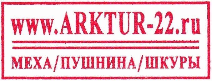 ПО АРКТУР-22