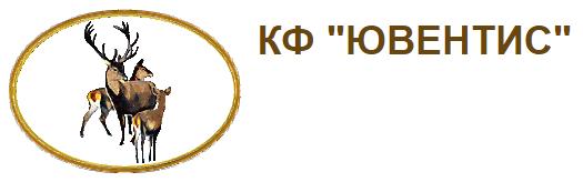 ООО ЮВЕНТИС
